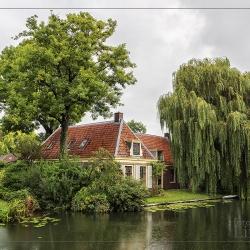 © René - Huis tussen de Bomen